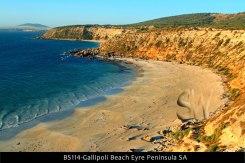 BS114-Gallipoli-Beach-Eyre-Peninsula-SA