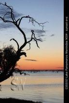 CSSS157-Lake-Pamamaroo-Meni