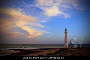 CSSS273-Point-Lowly-Lighthouse-SA