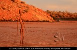 CSSS283-Lake-Ballard-WA-Antony-Gormley-sculpture-at-sunrise