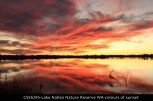 CSSS285-Lake-Nallan-Nature-Reserve-colours-of-sunset