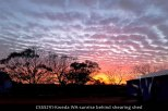 CSSS291-kweda-wa-sunrise-behind-shearing-shed