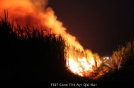 F107-Cane-Fire-Ayr-Qld-No1