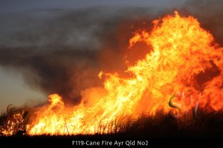 F119-Cane-Fire-Ayr-Qld-No2