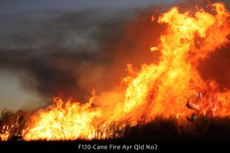 F120-Cane-Fire-Ayr-Qld-No2