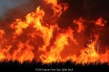 F124-Cane-Fire-Ayr-Qld-No3