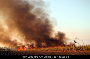 F130-Cane-Fire-Ayr-Qld-No5