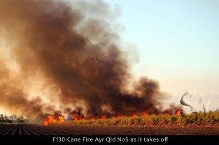 F130-Cane-Fire-Ayr-Qld-No5