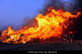 F148-Cane-Fire-Ayr-Qld-No9