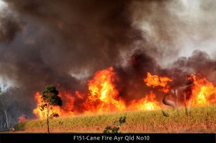 F151-Cane-Fire-Ayr-Qld-No10