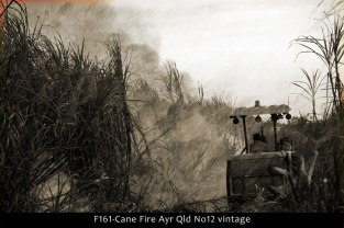 F161-Cane-Fire-Ayr-Qld-No12-vintage