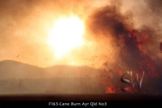 F163-Cane-Burn-Ayr-Qld-No3