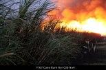 F167-Cane-Burn-Ayr-Qld-No4