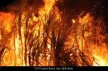 F171-Cane-Burn-Ayr-Qld-No5