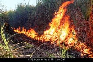 F175-Burn-in-the-drill-Giru