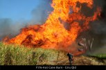 F176-Hot-Cane-Burn-Giru-Qld