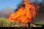 F177-Hot-Cane-Burn-Giru-Qld