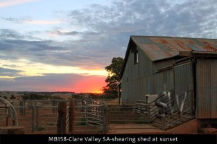 MB158-Clare-Valley-SA-shearing-shed-at-sunset