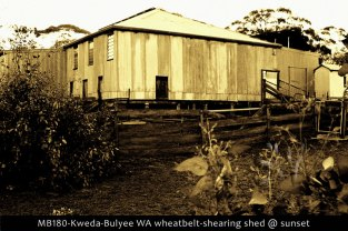 MB180-Kweda-Bulyee-WA-wheatbelt-shearing-shed-@-sunset