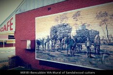 mb181-bencubbin-wa-mural-of-sandalwood-cutters
