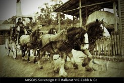 MISC05-Sovereign-Hill-Ballarat-VIC-Cobb-&-Co