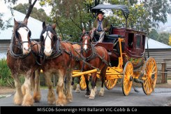 MISC06-Sovereign-Hill-Ballarat-VIC-Cobb-&-Co