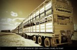 MM157-Windorah-Qld-road-trains-ready-to-load
