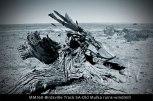 MM160-Birdsville-Track-SA-Old-Mulka-ruins-windmill