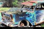 MM184a-Canna-WA-FE-Holden-Garden