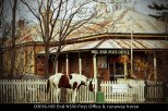 OB116-Hill-End-NSW-Post-Office-&-runaway-horse