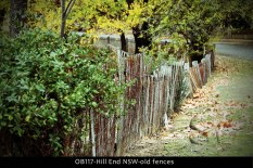 OB117-Hill-End-NSW-old-fences