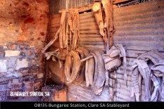 OB135-Bungaree-Station,-Clare-SA-Stableyard