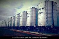 OB167-Kweda-Bulyee-WA-wheatbelt-grain-silos