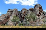 RS130-Purnululu-National-Park-NT