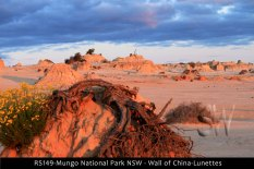 RS149-Mungo-National-Park-NSW