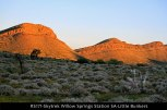 RS171-Skytrek-Willow-Springs-Station-SA-Little-Bunkers