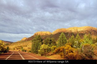 RS173-View-of-Wilpena-range