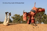 Tin-Horse-Highway,-Kulin-WA-Bucked-Rider
