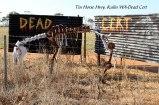 Tin-Horse-Highway,-Kulin-WA-Dead-Cert
