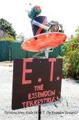 Tin-Horse-Highway,-Kulin-WA-E.T.-The-Essendon-Terrestrial