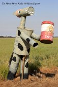 Tin-Horse-Highway,-Kulin-WA-Emu-Export