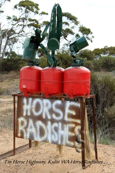 Tin-Horse-Highway,-Kulin-WA-Horse-Radishes