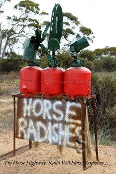 Tin-Horse-Highway,-Kulin-WA-Horse-Radishes