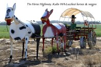 Tin-Horse-Highway,-Kulin-WA-Lucchesi-horses-&-wagon