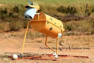 Tin-Horse-Highway,-Kulin-WA-Underarm-Bowler
