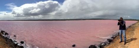 Pink Lake, Port Gregory