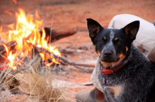 Chillin' by fire, near Coolgardie