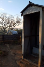 On a farm located next to Shearing Shed, Bulyee WA wheatbelt