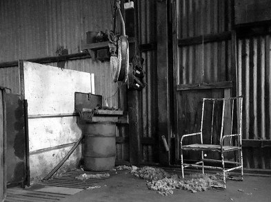 Shearing shed as it was left