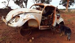 Jeda & a used VW